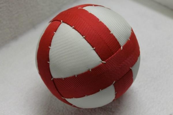 Poloball